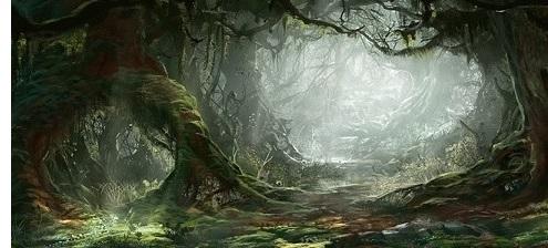 Mirkwood Forest
